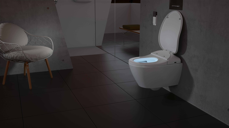 ViClean Dusch-WC